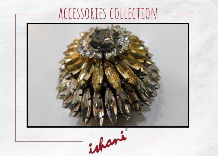 Ishani Accessories 21